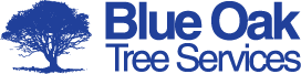 Blue Oak Tree Services